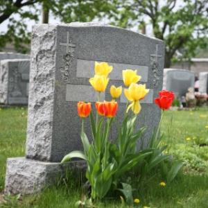 McGan Cremation Service LLC in Florida