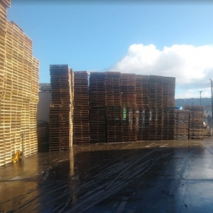 Bay Area Pallets LLC in California