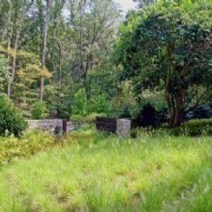 CARBO Landscape Architecture in Louisiana
