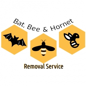 Bat, Bee & Hornet Removal Service in Virginia