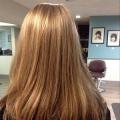 Rabbit Hair Studio