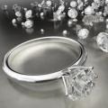 Snug Harbor Jewelry Inc. 2