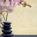 Dawn's Therapeutic Massage