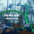Danforth Tree Specialists Inc.